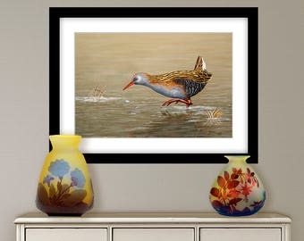 Digital painting, water rail, digital download and print on canvas or paper art