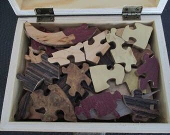 Dinosaur kids puzzle