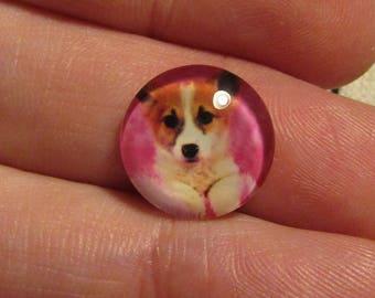 2cabochon 14mm glass dog theme