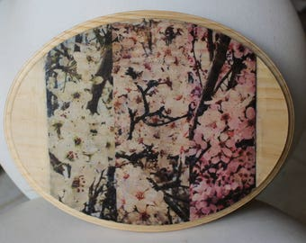 Wood transfer photo of cherry blossoms