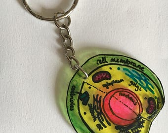 Cell keyring - cell biology keychain, human biology, animal biology