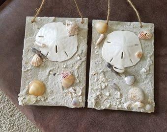 Sea Shells on the Sea Shore