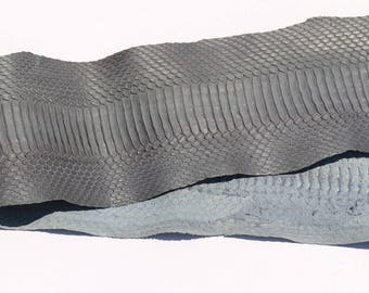 Genuine grey whale snake skin
