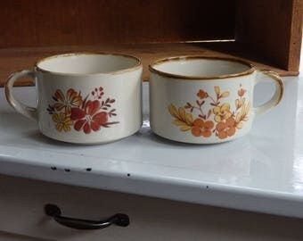 Vintage Soup Mugs, Autumn/Fall Stew Mugs, Set of 2, Soup Bowls with Handles