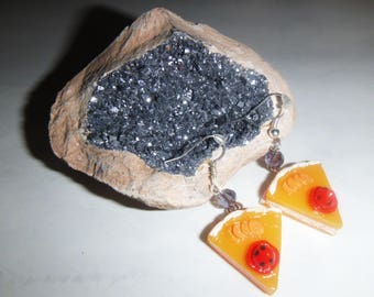 Nice pair of earrings in resin.