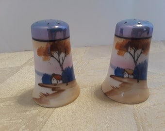 Country Shore Painted Salt and Pepper Shakers, Vintage Made in Japan