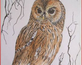 The OWL tawny ' ink on white canson paper.