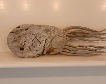 Driftwood Jellyfish