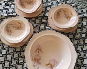 Vintage Dinning set May Flower by LIMOGES-AMERICAN