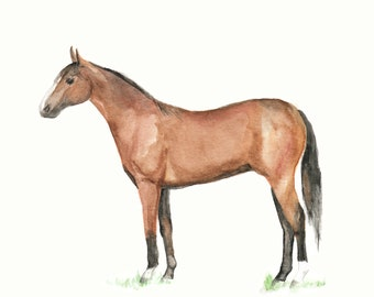 Horse Watercolor PRINT - Modern Farmhouse Horse, Mid Century Modern Horse, Horse Painting, Brown Horse, Standing Horse, Horse Decor, Horse
