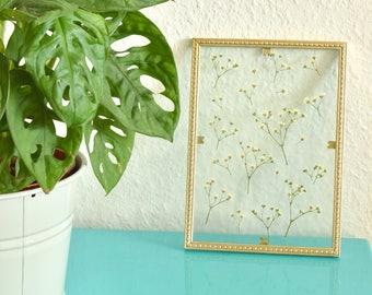 Ingelijste bloemen | Handgemaakt transparant fotolijst met geperste bloemen. Witte heidebloemen.