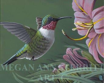 "Ruby Throated Hummingbird - PRINT, 8""x10"", giclee, by Megan Ann Sterritt."
