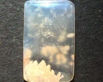 Stinking water plume agate cabochon 13 x 22 x 4 mm