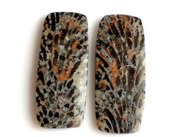 Black Coral Rectangl Pair Cabochon,Size- 27x11, MM, Natural Black Coral, AAA,Quality  Loose Gemstone, Smooth Cabochons.