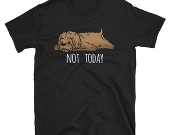 Funny Not Today Goldendoodle T-Shirt, Cute Doodle Dog Gift Shirt