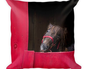 Horse Throw Pillow Cover with Insert, Farmhouse Sofa Couch Cushion, Barn Farm Animal Lover, 18 x 18 Kids Teen, Country Western Bedroom Decor