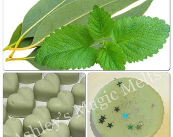3 peppermint eucalyptus soy wax melts, cold remedy relief, highly scented melts, mint wax melts, cheap wax melts, scented gifts for her