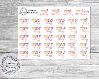 Birthday Countdown - Planner Stickers