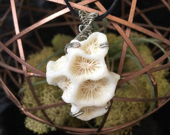 Wire Wrapped Coral Version 1