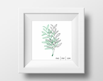 Vector, Graphic, Design, Home, Illustration, Decoration, PNG, PDF, CDR, Plants, Minimal, Style, Modern