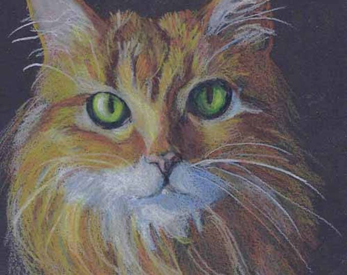 Dramatic Custom Pet Portrait Drawing on Black Paper by Artist Robin Zebley