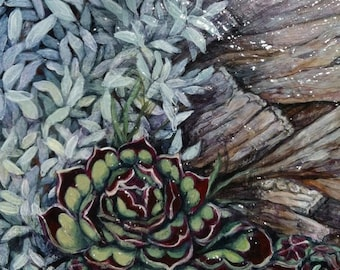 "KIT SALE Original Acrylic Painting, ""Hen and Chicks no. 4"", free shipping anywhere, succulents, garden art, xeriscape, original painting"