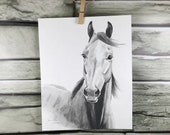 "Horse art original ""Breezy"" pencil drawing - water soluble graphite"