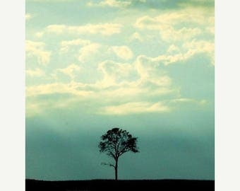 50% OFF SALE Landscape Photography, Nature Picture, Teal, Blue, Sky, Clouds, Minimal, Tree,  5x7 inch Photo - One Tree