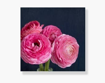 Nature photo canvas gallery wrap, pink ranunculus photo canvas, floral decor, flower canvsa art, navy blue, shabby chic decor - A Pink Bunch