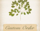 Custom listing for anne61
