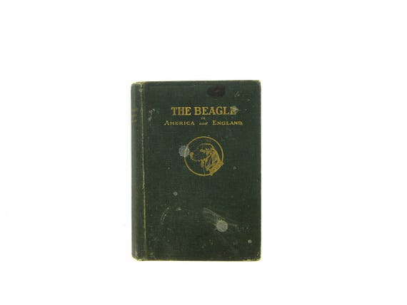 The Beagle in America and England by HW Prentice 1920s Hardcover book Green Home Book Decor