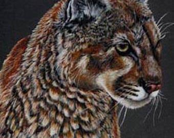 Mountain Lion Art Note Card