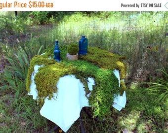 Save 15% Real Moss-Preserved Sheet Moss-Thuidium Delicate Fern Moss-Gallon Bag floral moss-Wedding decor-Wreaths-Wedding moss