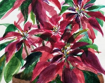 Red Holiday Plant,Christmas Poinsettia Flower,Original Watercolor Painting,Beautiful hand painted Poinsettia for Home by Janet Dosenberry