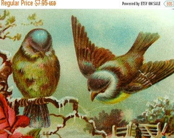 ONSALE Gorgeous and Rare Victorian N0 Lithograph Birds and Roses Trade Card No43