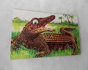 Vintage Google Eye Squeak Alligator Postcard