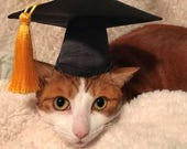 Graduation Cap for cats and dogs