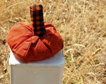 Fall Pumpkin Decoration | Gift