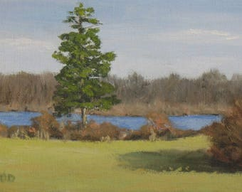 """Landscape painting, Pine tree and pond, original oil, 5"""" x 7"""""""