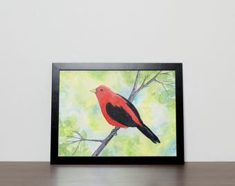 Scarlet Tanager Print from Original Watercolor