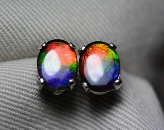 Ammolite Earrings, Ammolite Stud Earrings, Sterling Silver, 9x7mm Oval Cabochon, Alberta Canada Jewelry Jewellery, Pair #32