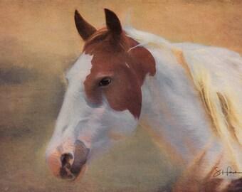 Mingo - Fine Art Wild Horse Painting - Wild Mustang of Sand Wash Basin, Wild Horse Painting, sand wash basin wild horses, Colorado Mare
