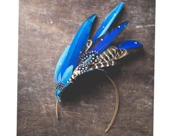 Blue feather headdress 'Aves'