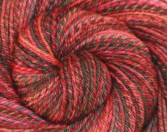 Handspun Yarn - Through the Looking Glass - Handpainted Merino wool, 3 ply Worsted weight, 224 yards