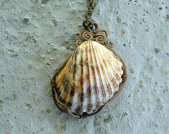 Collar del Mar Necklace / Handmade Jewelry / Seashell Necklace