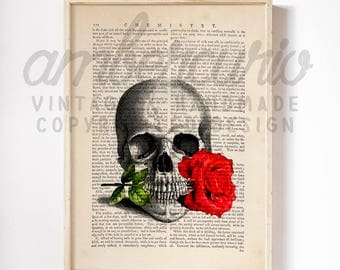 Skull Rose Macabre Romance Antique Anatomy Original Print on an Unframed Upcycled Bookpage