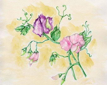 Sweet Peas Watercolor Print, Spring Flower Painting, Floral Still Life Picture, Pink and Purple Home Decor, Garden Art, Bedroom or Bathroom