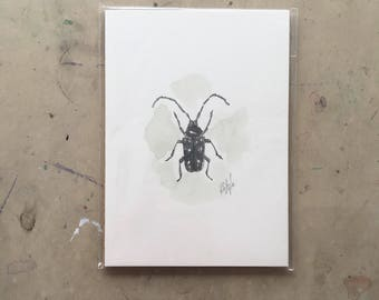 Original Little Black Bug Watercolour Painting 5x7