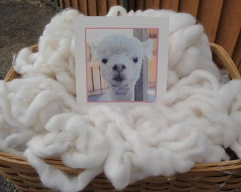 White Baby Alpaca Roving 4.4 ounces from Rose