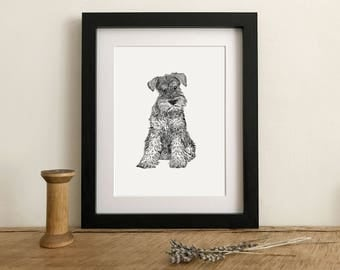 Schnauzer Giclee Print from a hand drawn illustration - Schnauzer drawing - Mounted Schnauzer Print